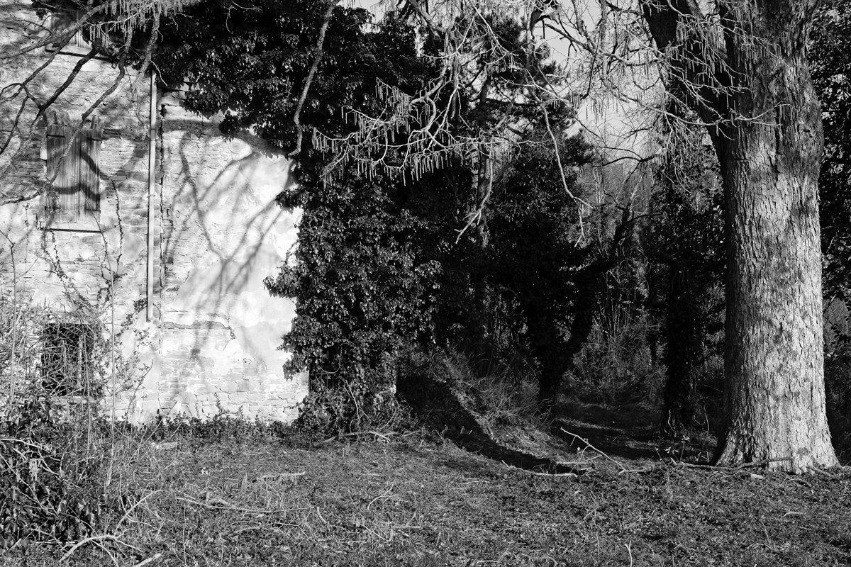 © Daniele Prati - Le vecchie foto delle stelle